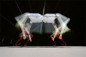 Foto: MPI für Intelligente Systeme / W. Scheible
