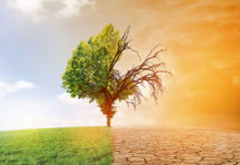 Kanzlei Nachhaltigkeit Klimawandel, Foto: AdobeStock/ jozsitoeroe